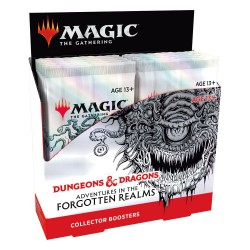 Magic -  Caja sobre coleccionista Dungeons & Drago